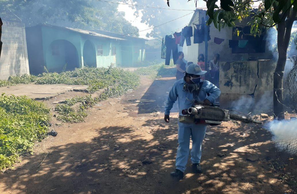 Eliminación de criaderos de zancudos, clave para prevenir enfermedades