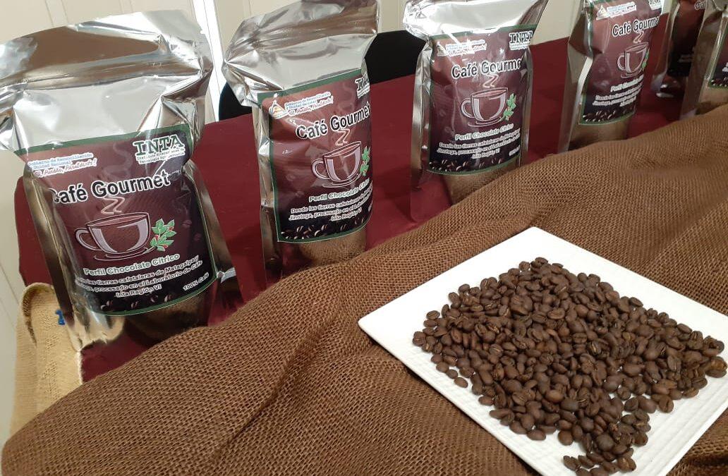 Convocan a certamen nacional Emprende Café, Barismo e Innovación