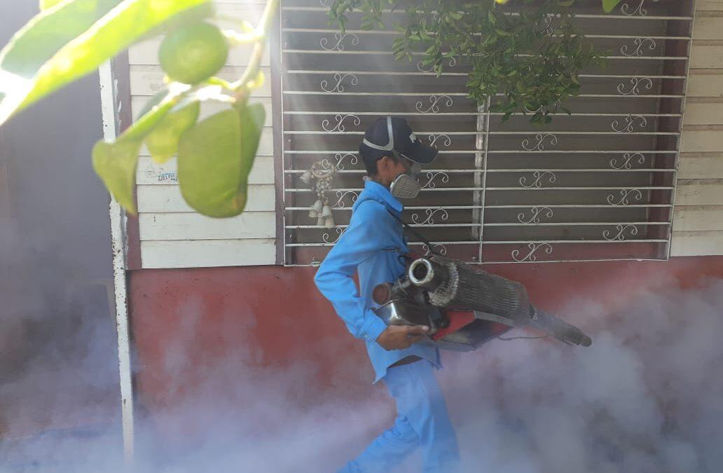 Intensifican lucha contra mosquito transmisión del dengue