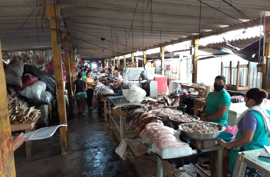 Abastecimiento y precios módicos de productos del mar en los mercados