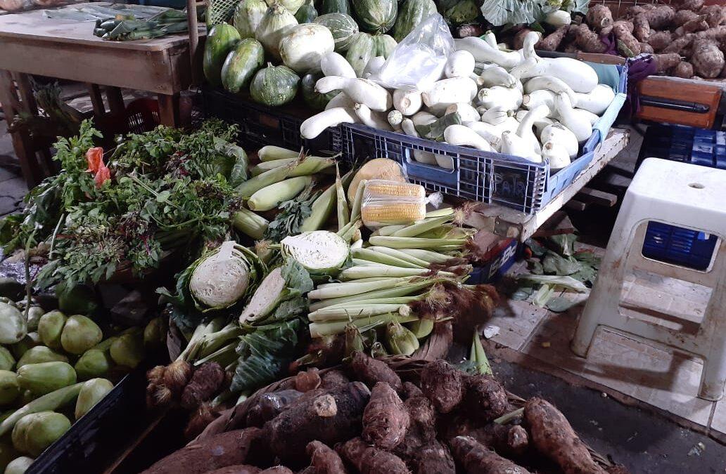 Precio de las Verduras y frutas en el Iván Montengro se mantienen estables