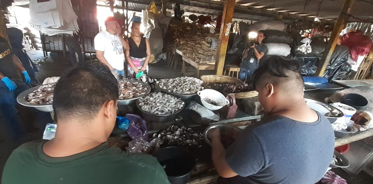 Filetes de Tiburón, Lenguado y Anguila, con buena demanda de compradores
