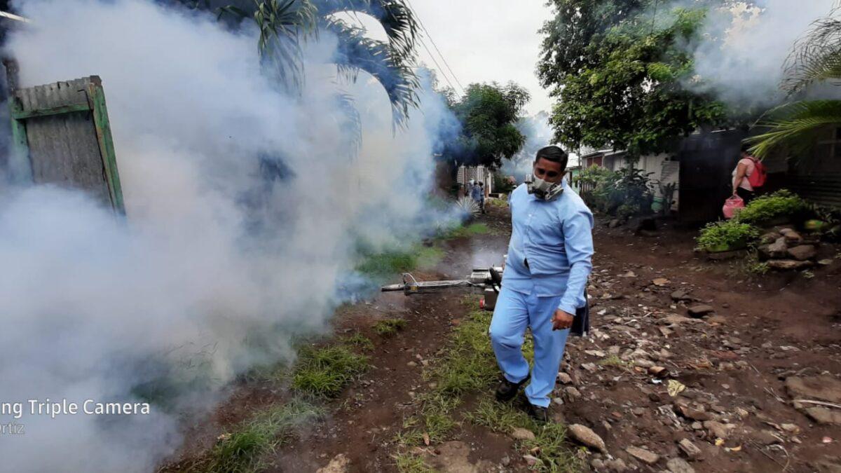 Hoy es el día mundial de lucha contra el Dengue