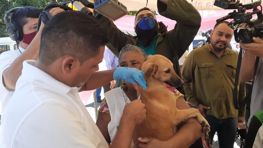 Inicia la jornada Nacional de vacunación antirrábica canina en Nicaragua