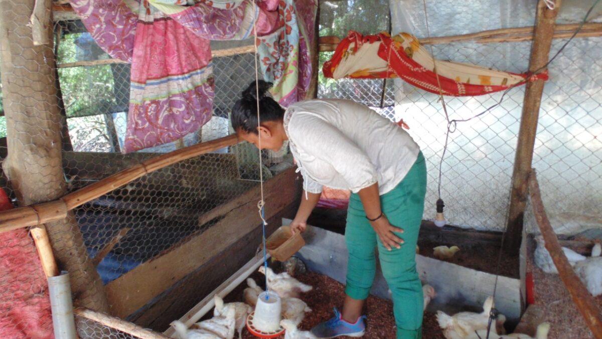 Boaco, emprendedora rural diversifica sus ingresos