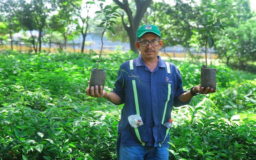 Nicaragua capitaliza a más emprendedores de distintos negocios