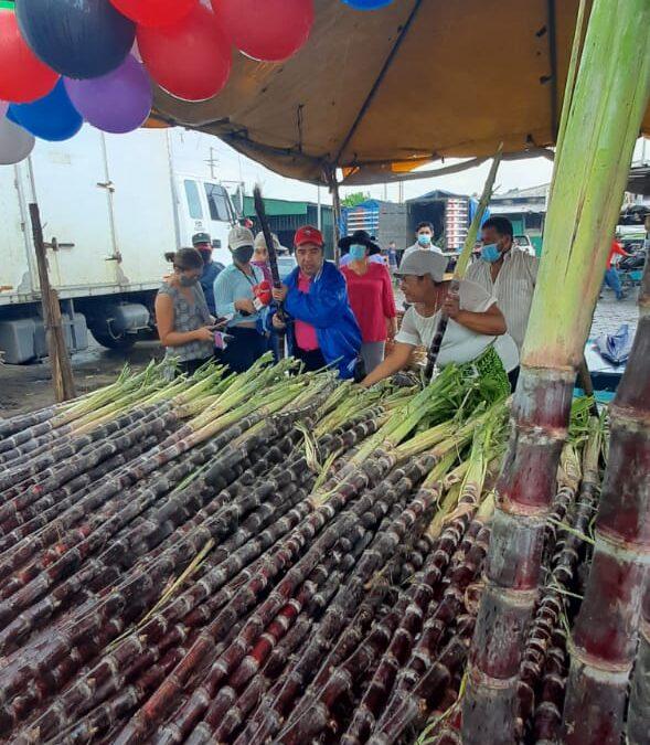 Caña de azúcar de venta en el Mayoreo
