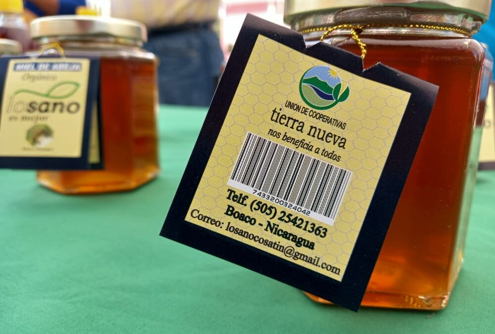 Desarrollan importante feria innovadora de la miel en Boaco