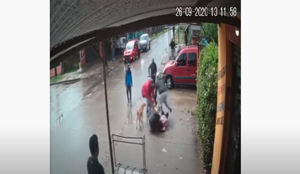 Pitbull ataca a niña de 7 años