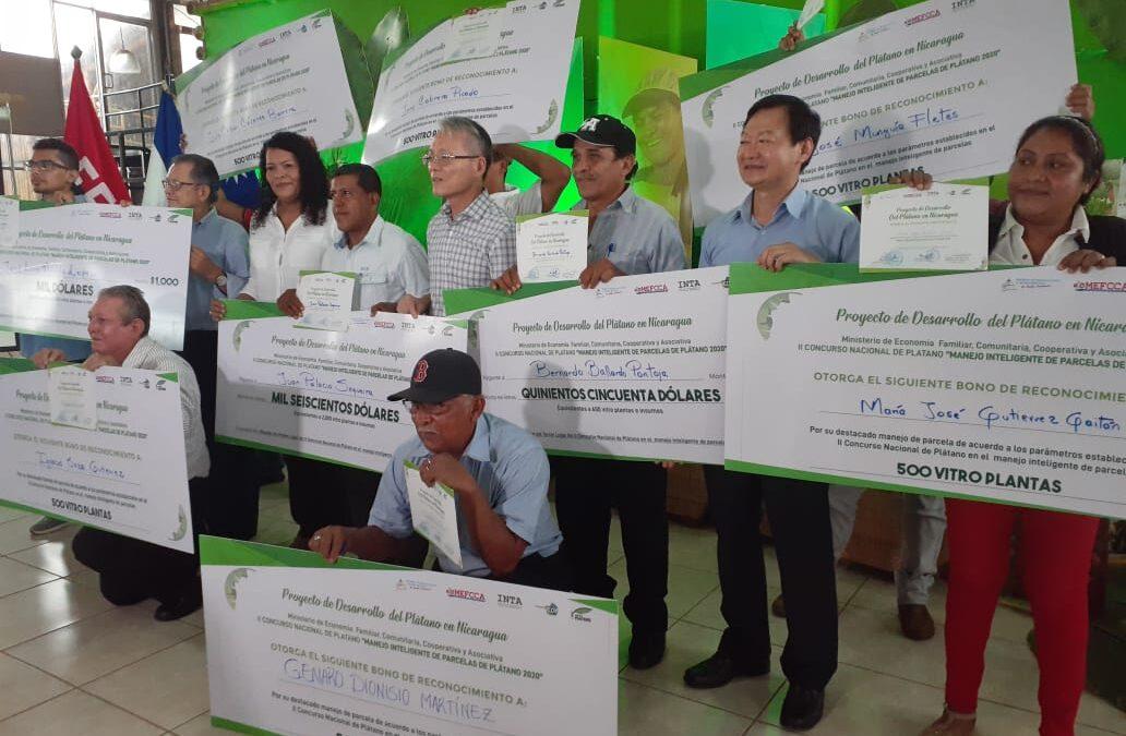 Premian a ganadores sobre desarrollo de plátano