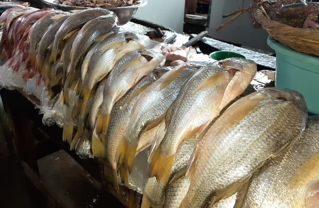 La libra de pescado registra ligero aumento