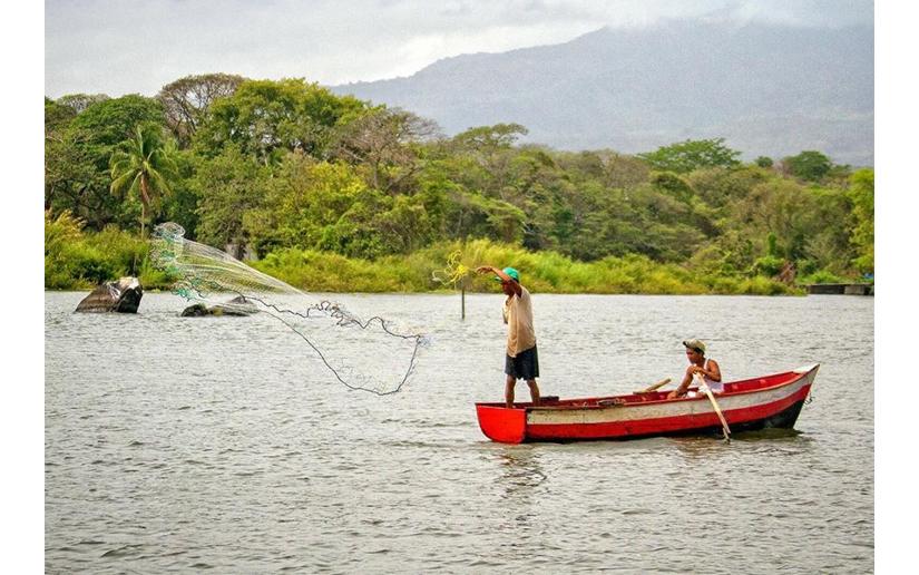 Inicia temporada para la pesca de Pepino de Mar