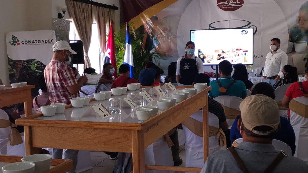 Selección del Jurado Nacional del Certamen Taza de Excelencia Nicaragua 2021