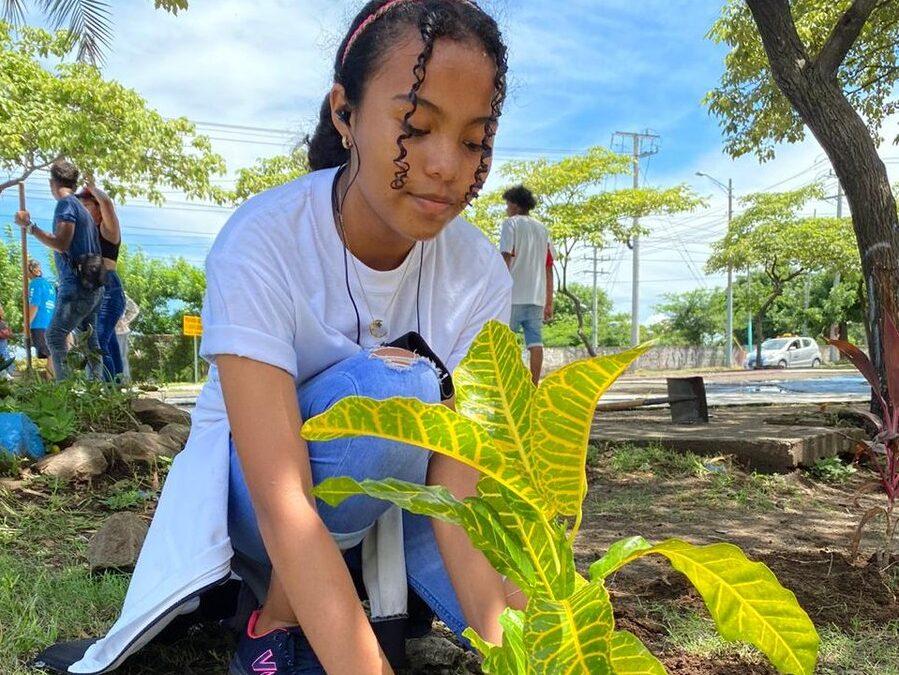 Nicaragua plantará 22 millones de árboles en 2021