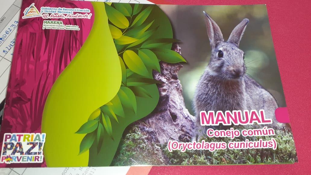 Realizan lanzamiento de manual sobre crianza de conejos