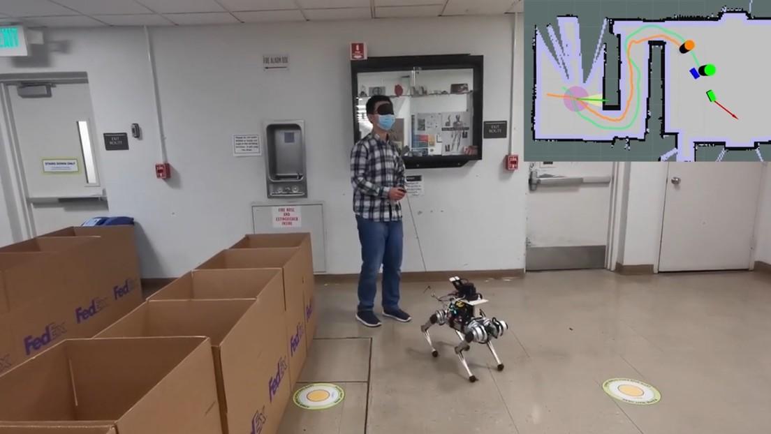 Diseñan un perro guía robot para personas con discapacidad visual