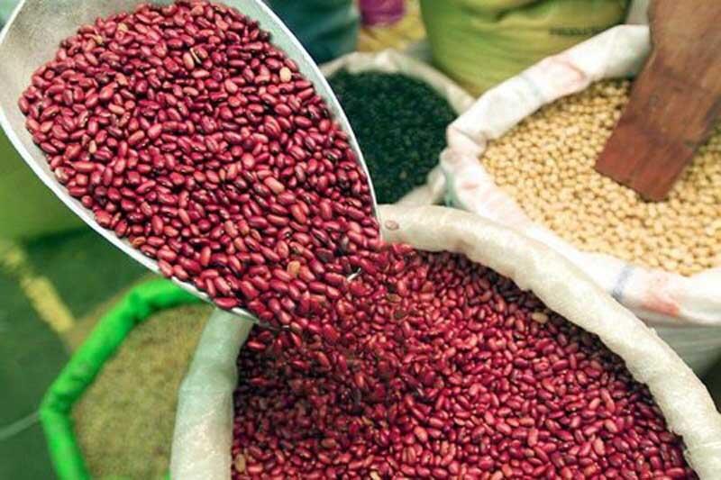Mejoran exportaciones de café y frijol en los primeros 4 meses del 2021