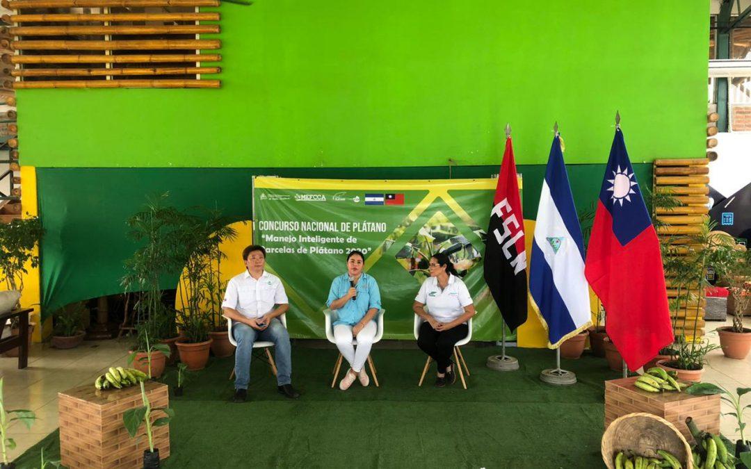 Nicaragua realiza tercer Concurso Nacional del Plátano