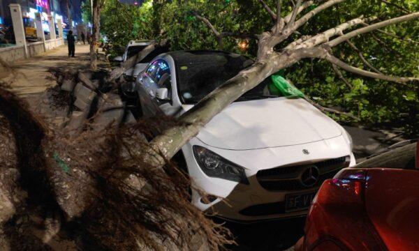Una tormenta eléctrica deja 11 personas fallecidas y 66 heridas en China