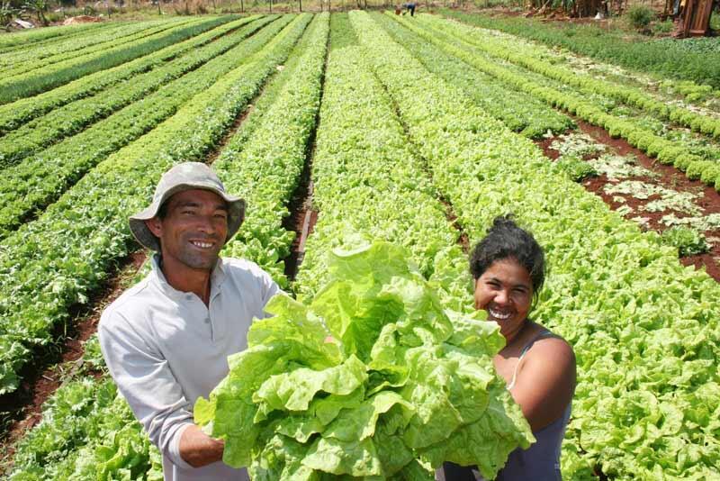 Importantes proyectos beneficiarán a familias productoras de Nicaragua