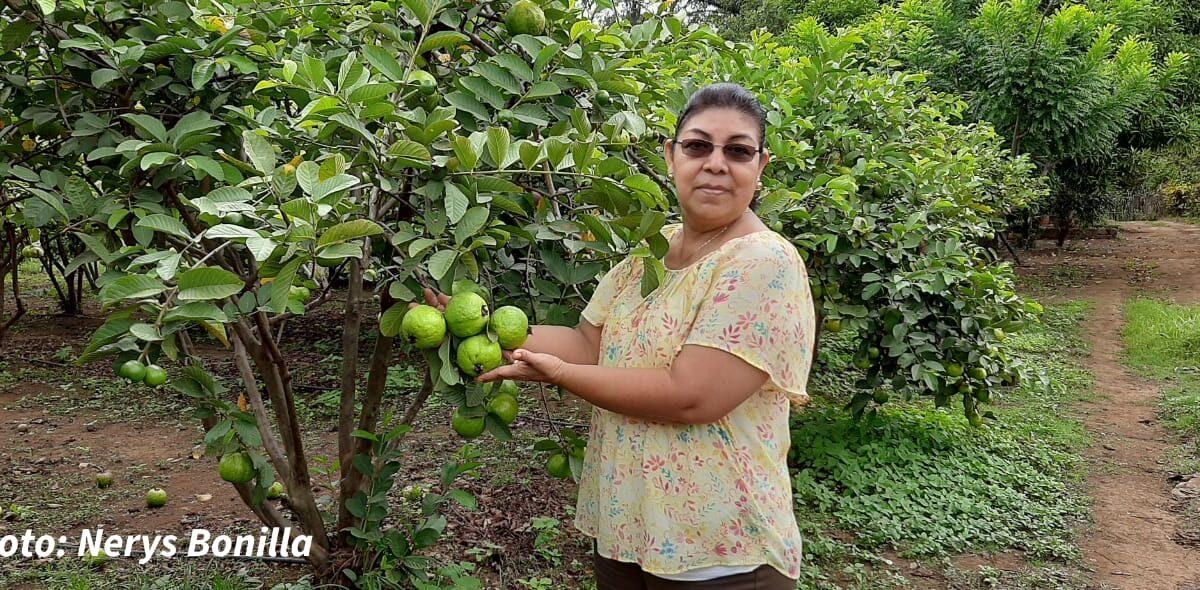 Finca Los Pérez, un lugar agroturístico en Ticuantepe