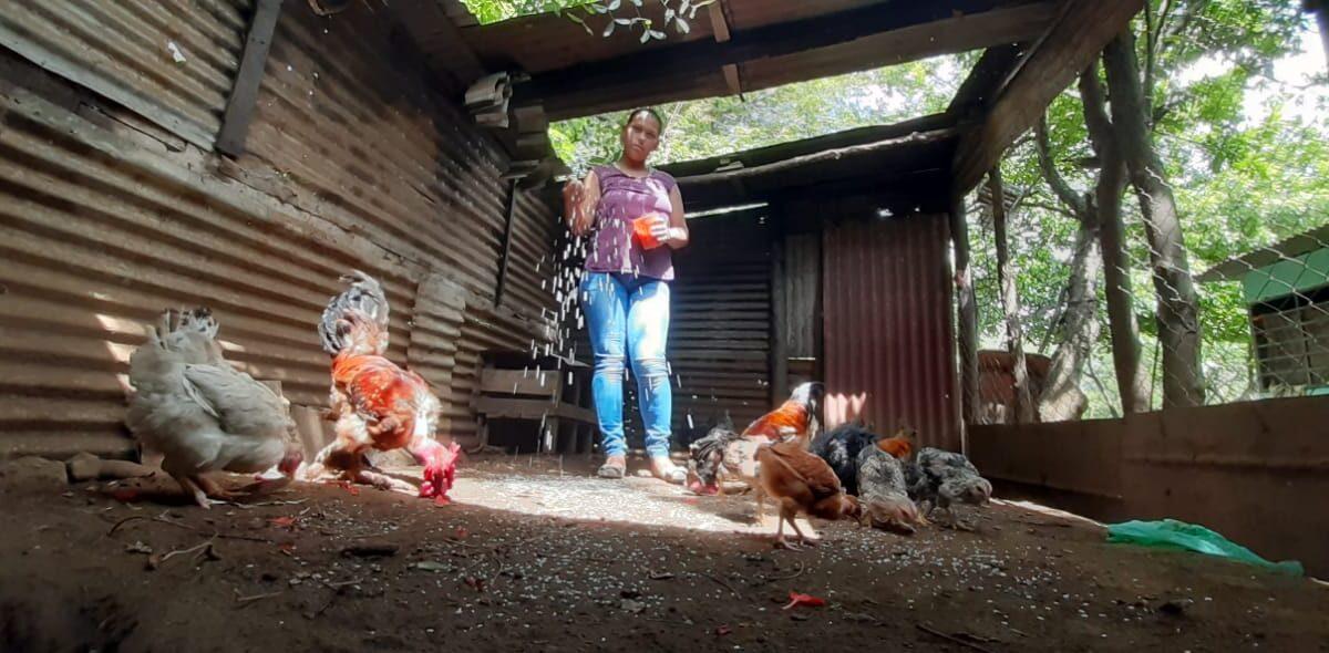 Pequeños agricultores aportan al crecimiento de la producción en Managua