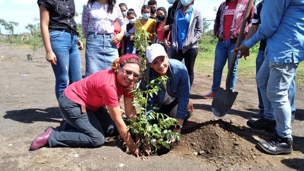 Alcaldía de Managua plantará más de 7 mil árboles en las principales avenidas
