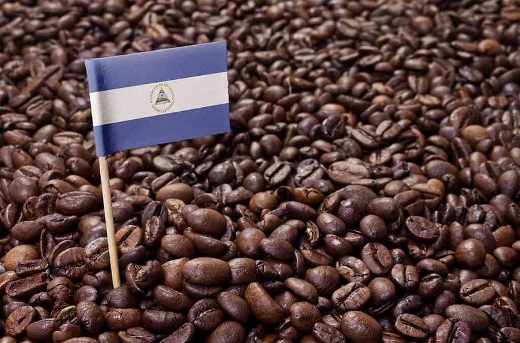 Café nicaragüense ronda en U$200 por quintal en la bolsa de Nueva York