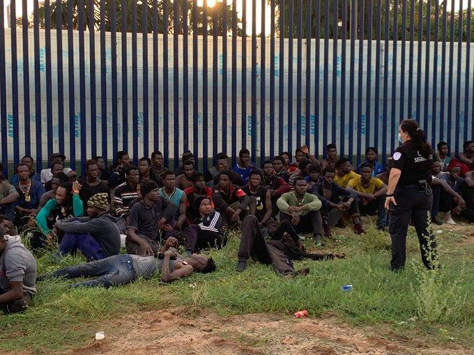 España: al menos 300 inmigrantes subsaharianos entran a Melilla saltando la valla