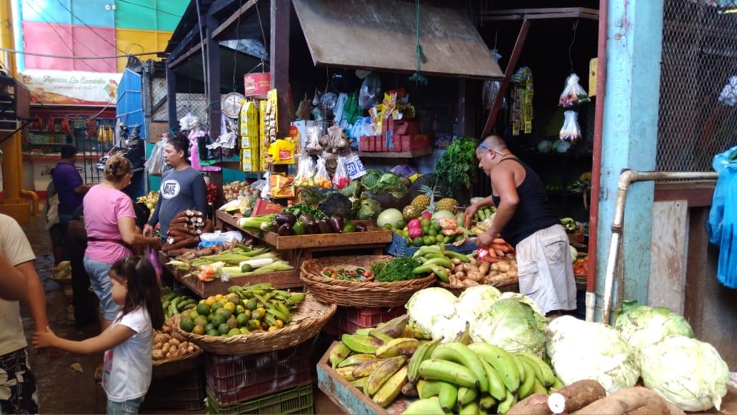 Precios de los granos básicos no varían en los mercados de Managua