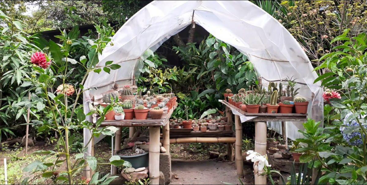 Vivero Jardín La Casita, un Paraíso natural en Carazo