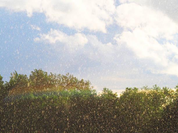 Ineter pronostica mañanas soleadas y tardes lluviosas en Nicaragua